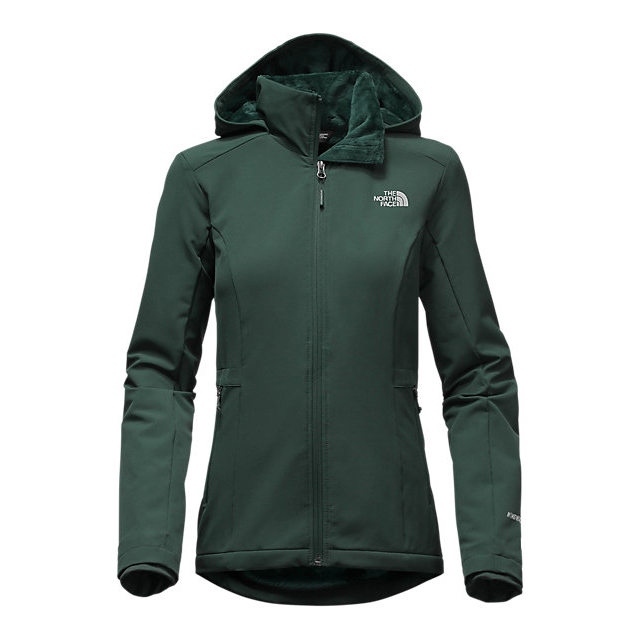 CHEAP NORTH FACE WOMEN'S SHELBE RASCHEL HOODIE DARKEST SPRUCE ONLINE